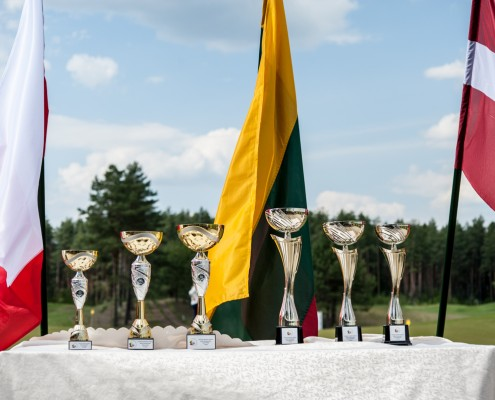 Lietuvos Atvirasis Senjorų Čempionatas 2016